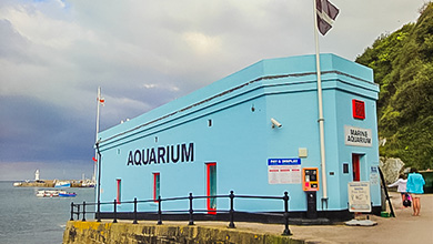 days-mevagissey-aquarium