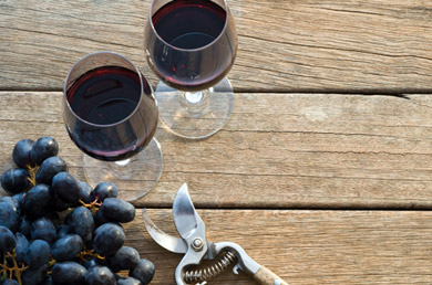 ellis-wharton-wines