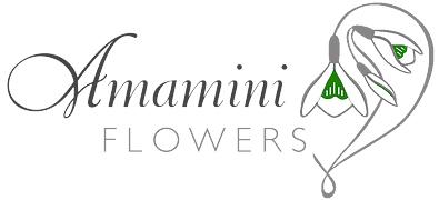 amamini_logo